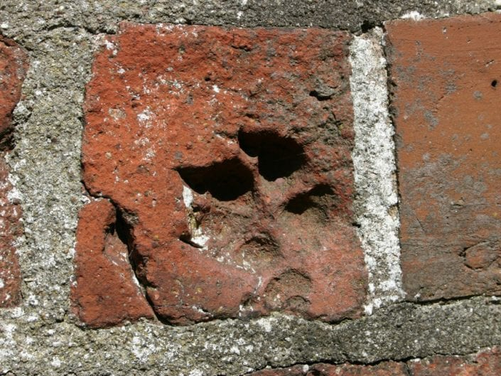 Hundepoten i kirkemuren